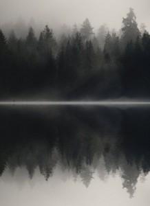 night reflecttion